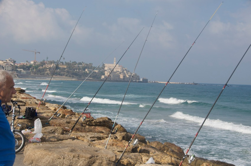 Yafo in the distance