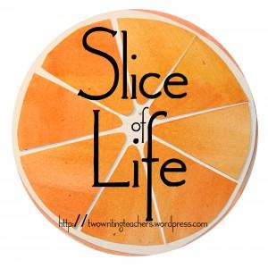 slice-300x300