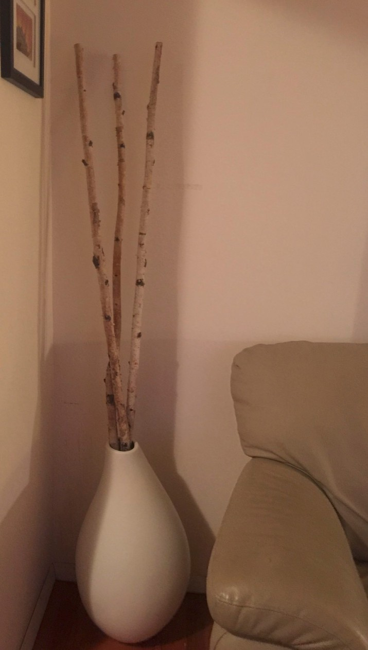 New vase and birchwood